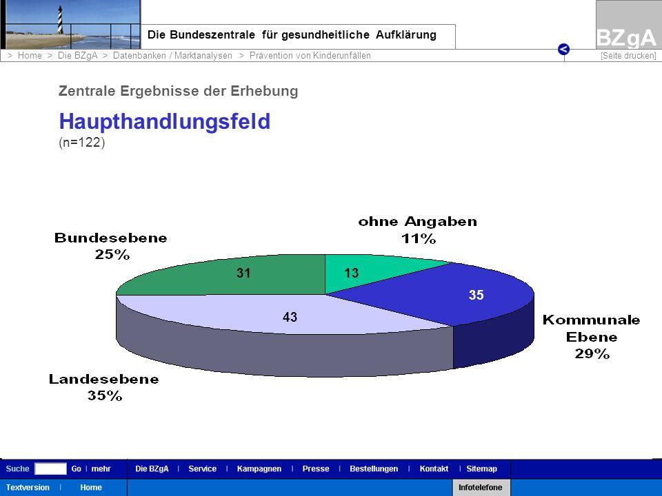 Haupthandlungsfeld Zentrale Ergebnisse der Erhebung (n=122) 31 13 35