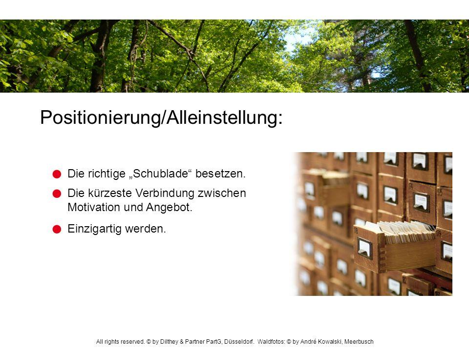 Positionierung/Alleinstellung: