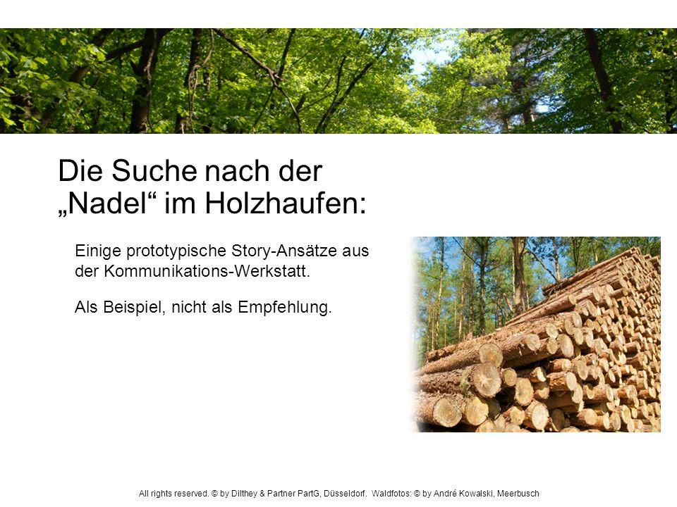 """Die Suche nach der """"Nadel im Holzhaufen:"""