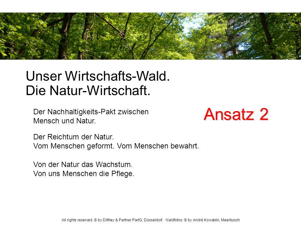 Ansatz 2 Unser Wirtschafts-Wald. Die Natur-Wirtschaft.