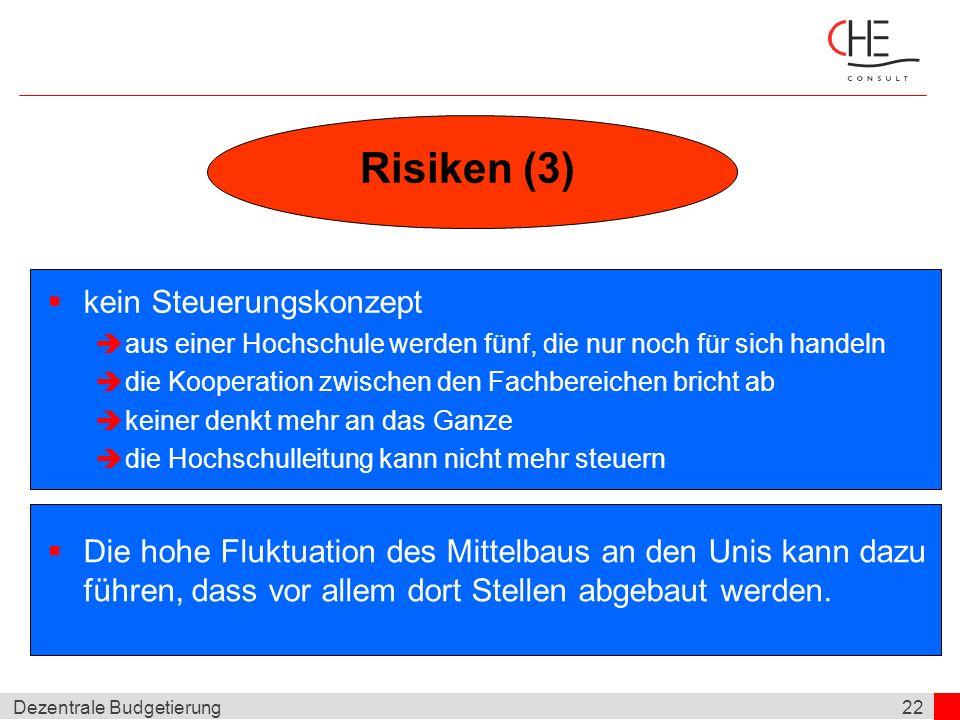 Risiken (3) kein Steuerungskonzept