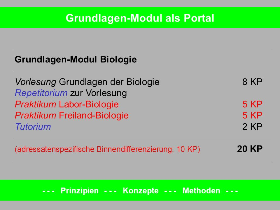 Grundlagen-Modul als Portal