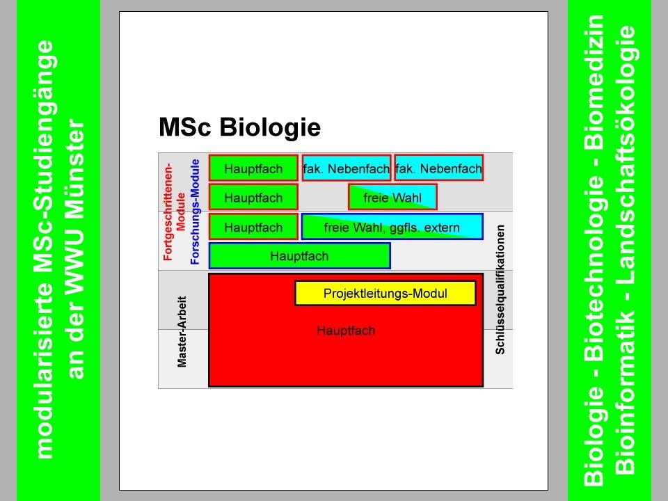 modularisierte MSc-Studiengänge