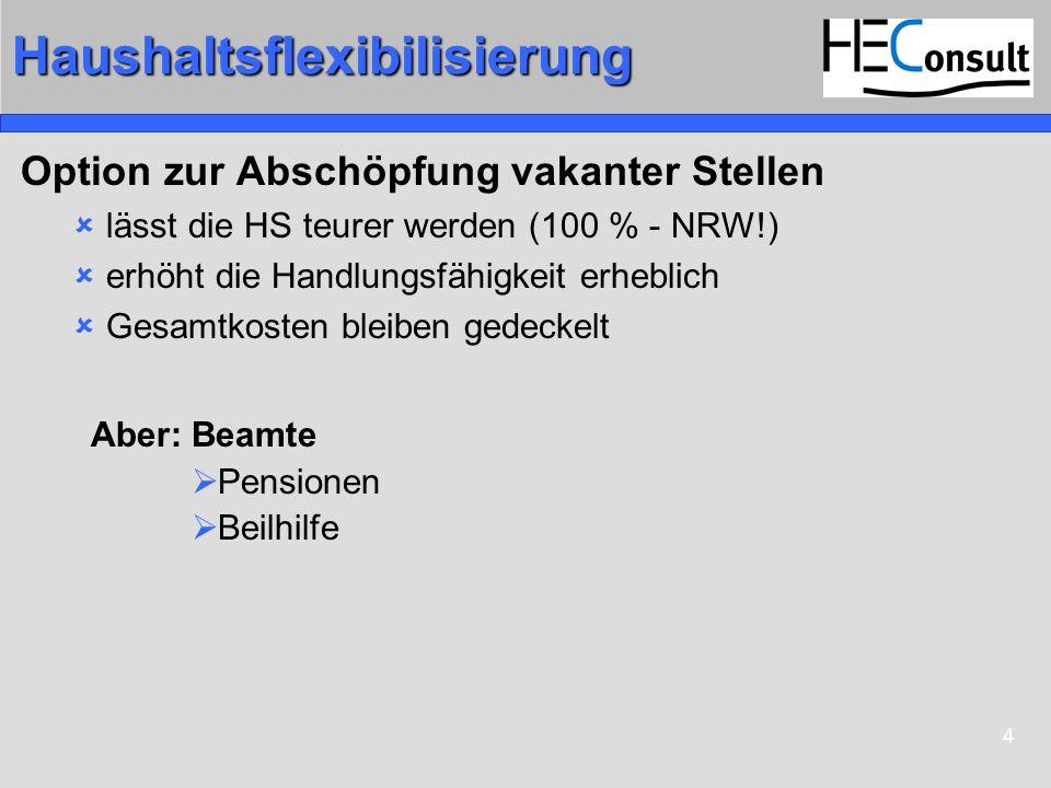 Haushaltsflexibilisierung