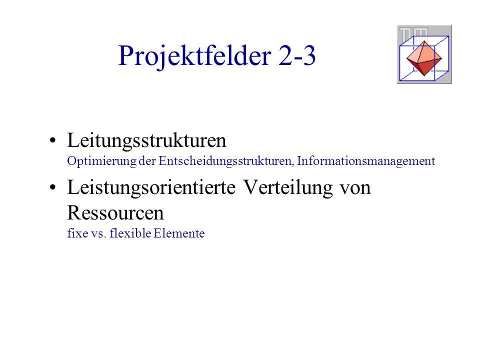 Projektfelder 2-3 Leitungsstrukturen Optimierung der Entscheidungsstrukturen, Informationsmanagement.