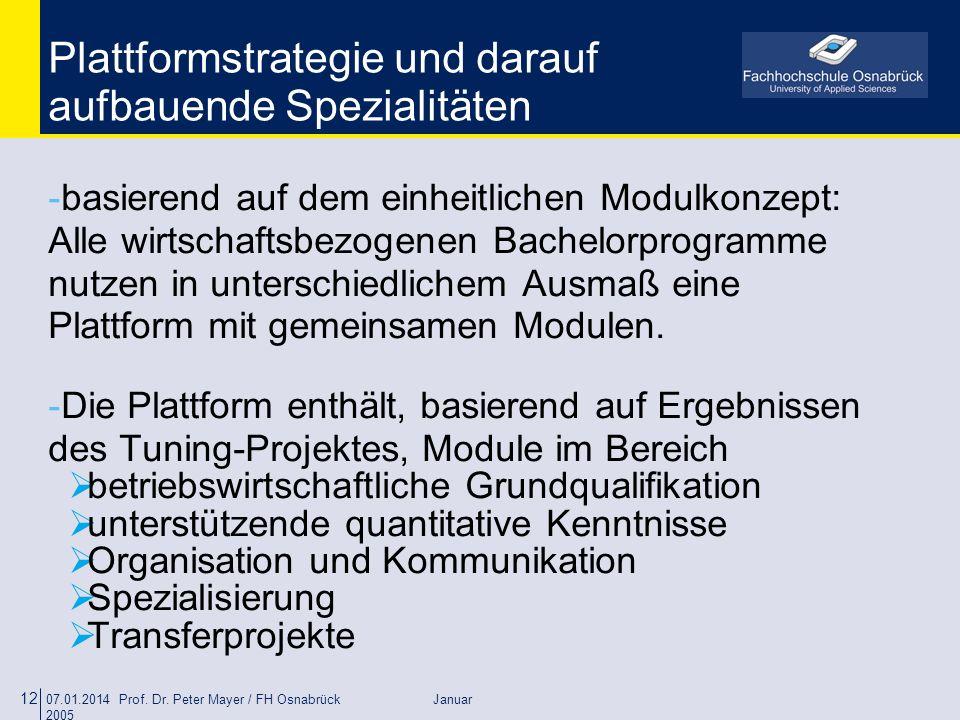 Plattformstrategie und darauf aufbauende Spezialitäten