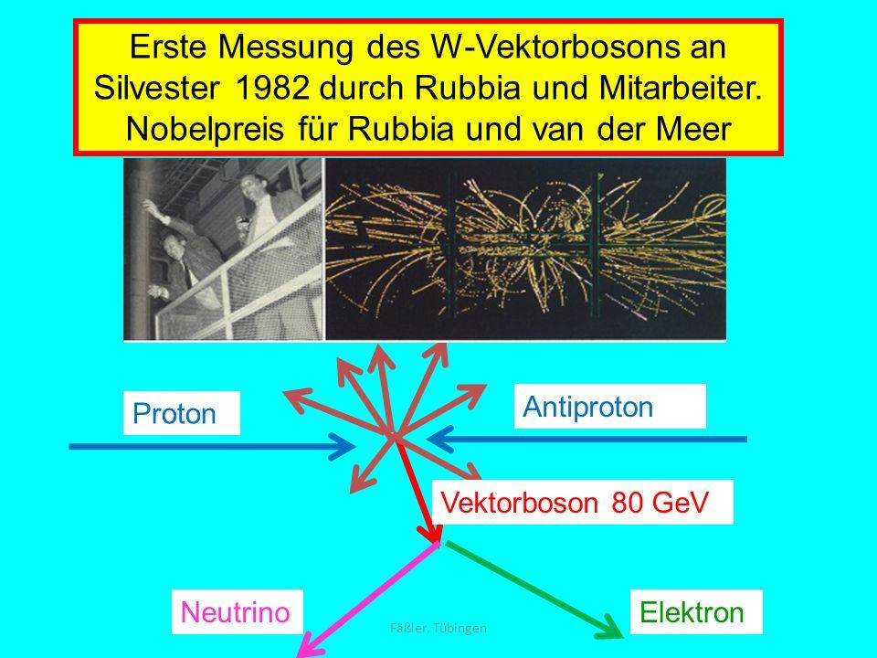 Erste Messung des W-Vektorbosons an