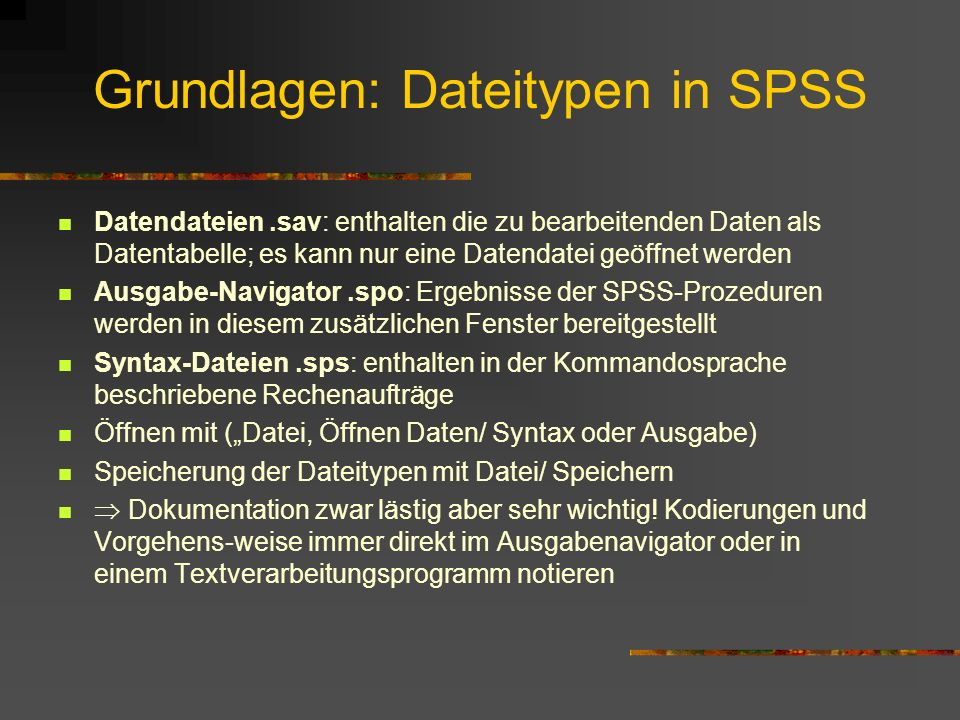 Grundlagen: Dateitypen in SPSS
