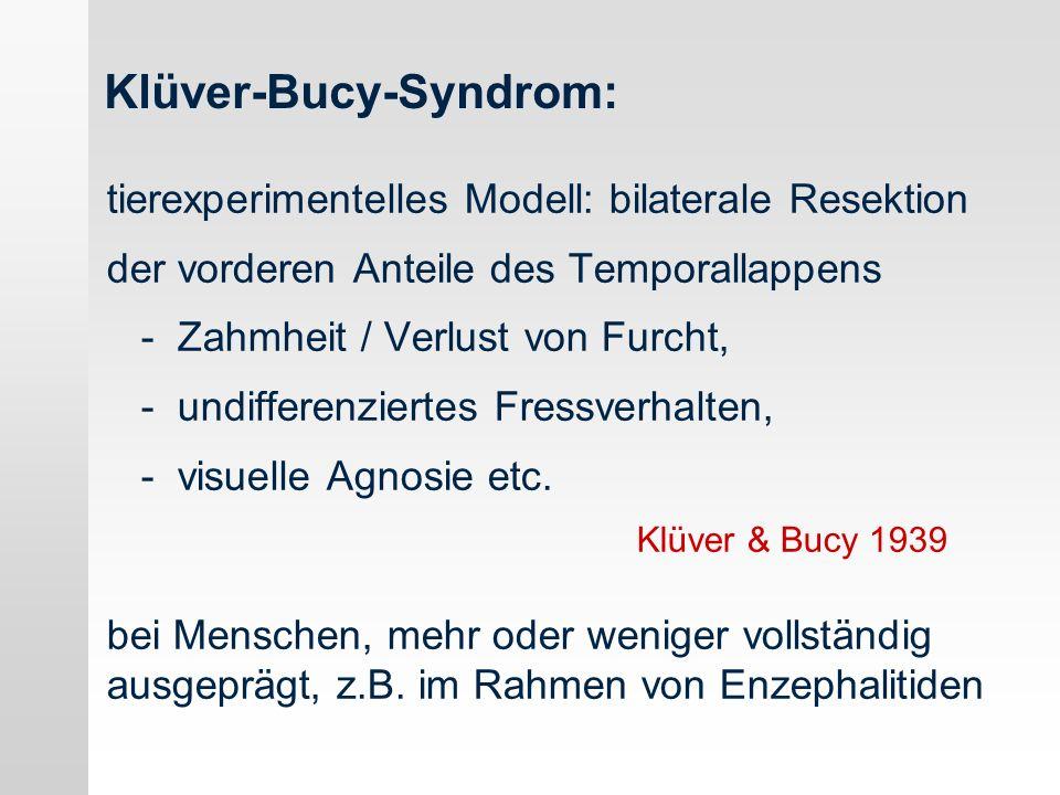 Klüver-Bucy-Syndrom: