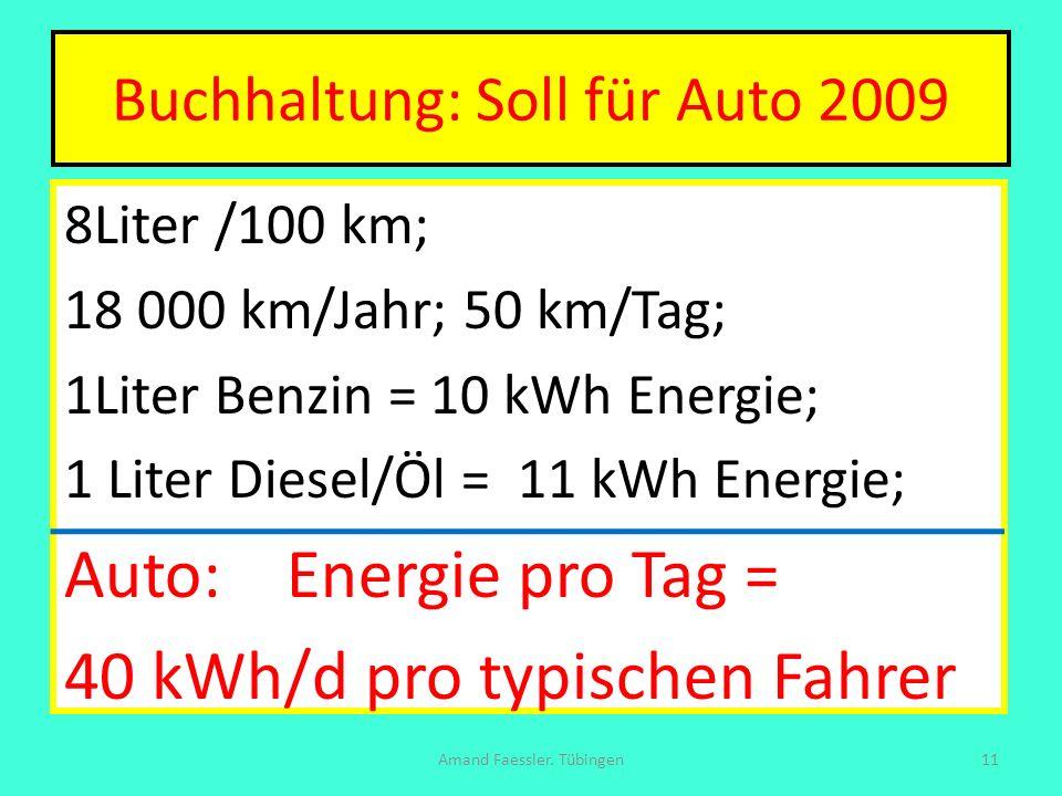 Buchhaltung: Soll für Auto 2009