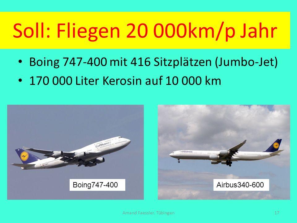 Soll: Fliegen 20 000km/p Jahr