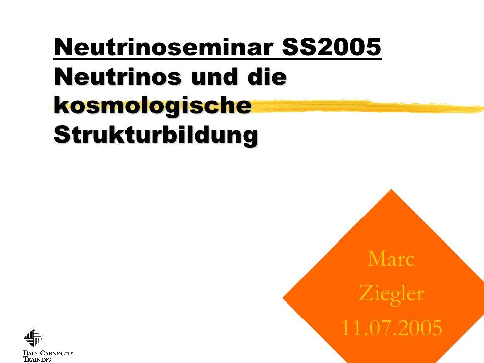 Neutrinoseminar SS2005 Neutrinos und die kosmologische Strukturbildung