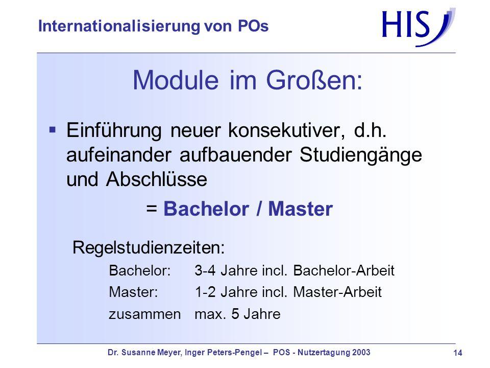 Module im Großen:Einführung neuer konsekutiver, d.h. aufeinander aufbauender Studiengänge und Abschlüsse.