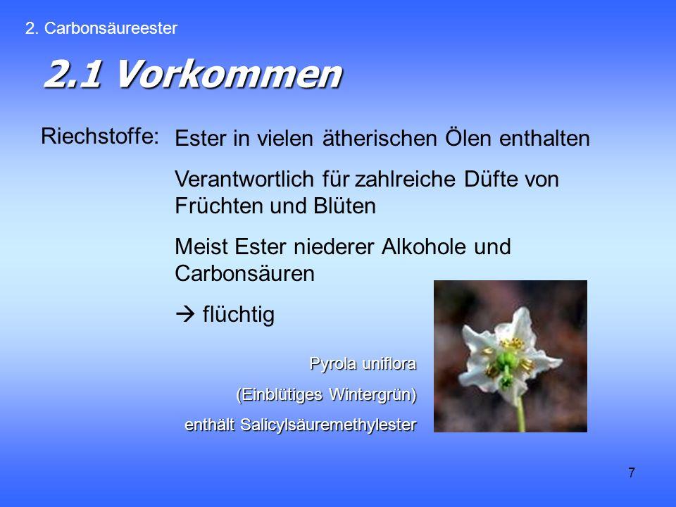 2.1 Vorkommen Riechstoffe: Ester in vielen ätherischen Ölen enthalten