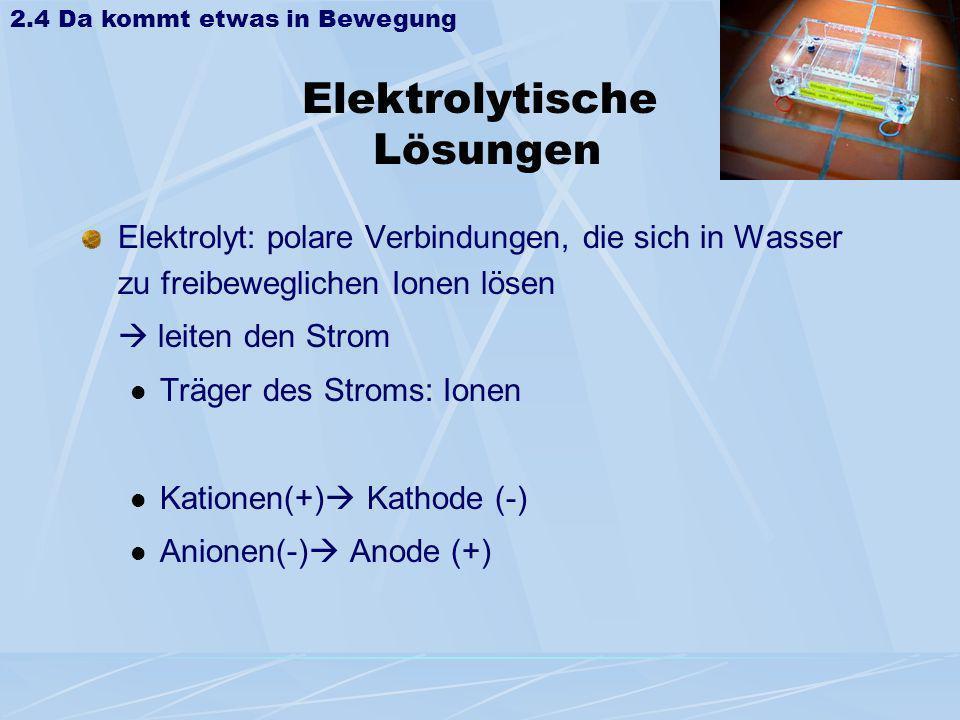 Elektrolytische Lösungen