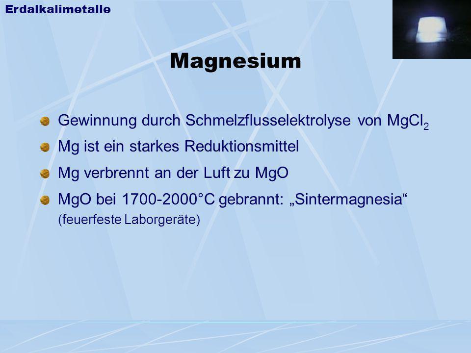 Magnesium Gewinnung durch Schmelzflusselektrolyse von MgCl2