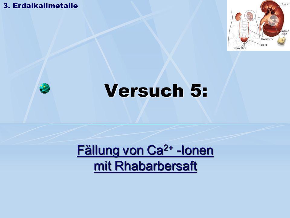 Versuch 5: Fällung von Ca2+ -Ionen mit Rhabarbersaft