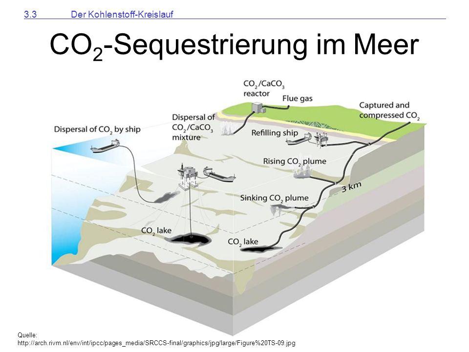 CO2-Sequestrierung im Meer