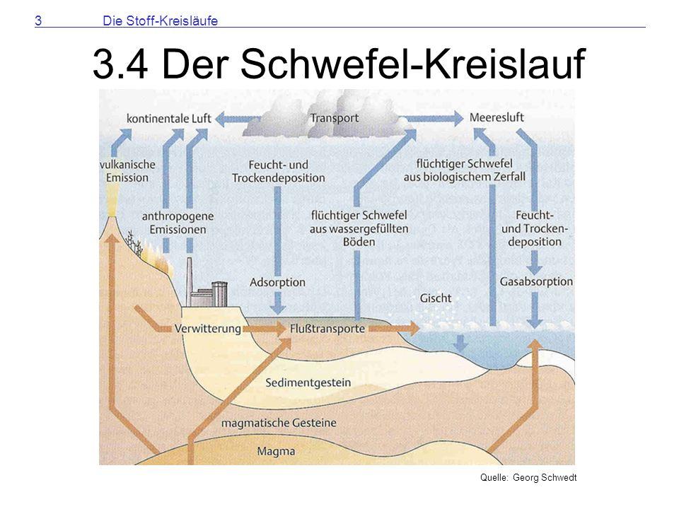 3.4 Der Schwefel-Kreislauf
