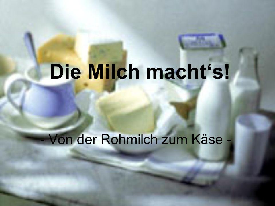 - Von der Rohmilch zum Käse -