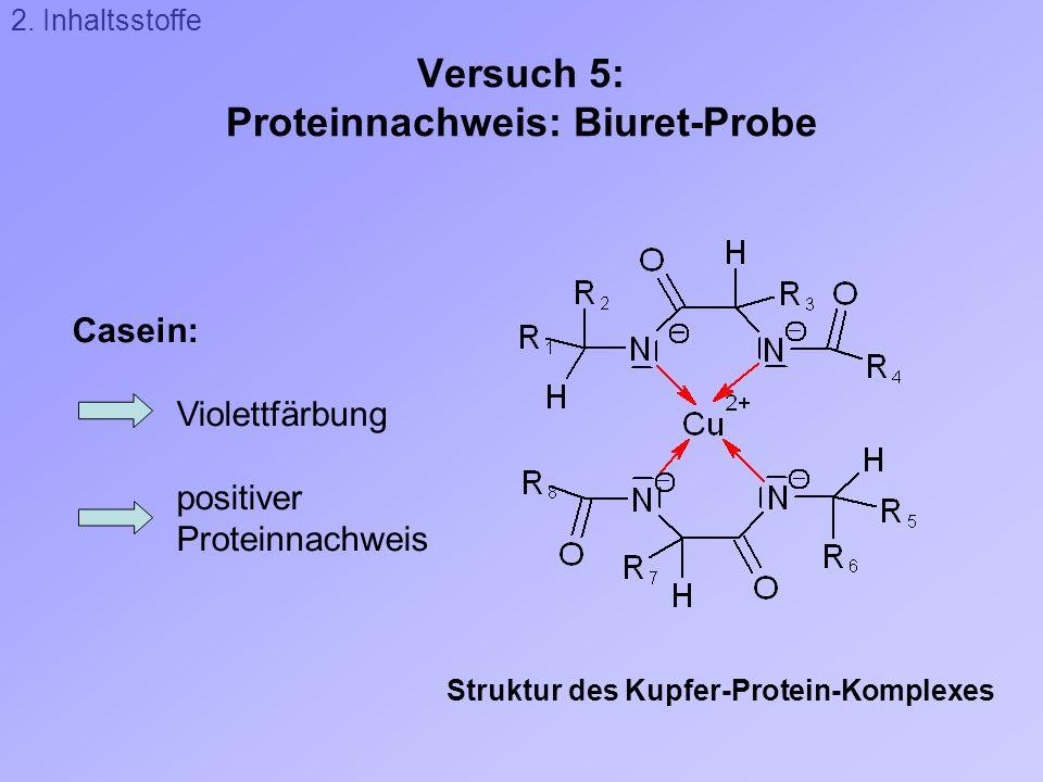 Versuch 5: Proteinnachweis: Biuret-Probe