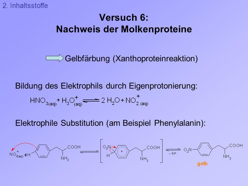 Versuch 6: Nachweis der Molkenproteine