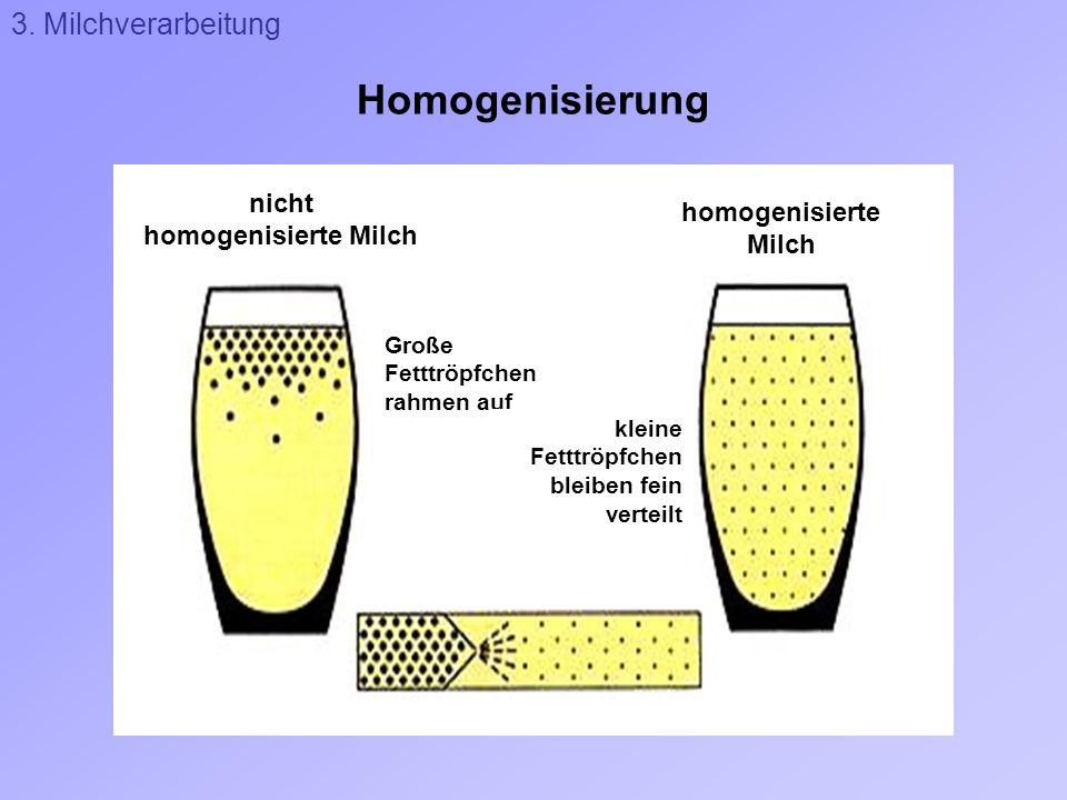 Homogenisierung 3. Milchverarbeitung nicht homogenisierte Milch