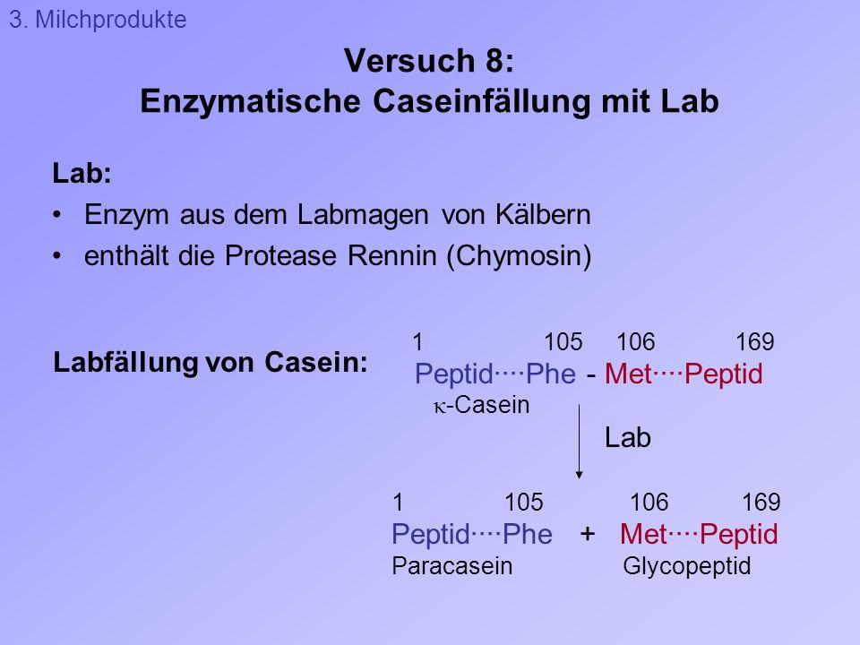 Versuch 8: Enzymatische Caseinfällung mit Lab