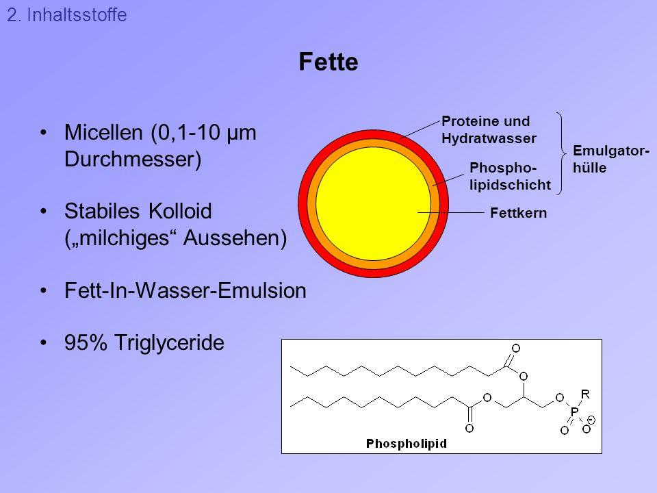 Fette Micellen (0,1-10 µm Durchmesser)