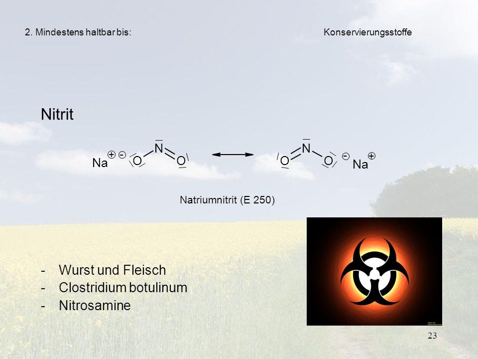 Nitrit Wurst und Fleisch Clostridium botulinum Nitrosamine N - O Na