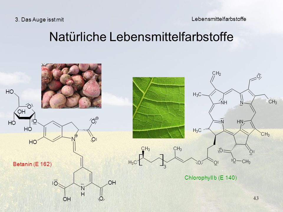 Natürliche Lebensmittelfarbstoffe