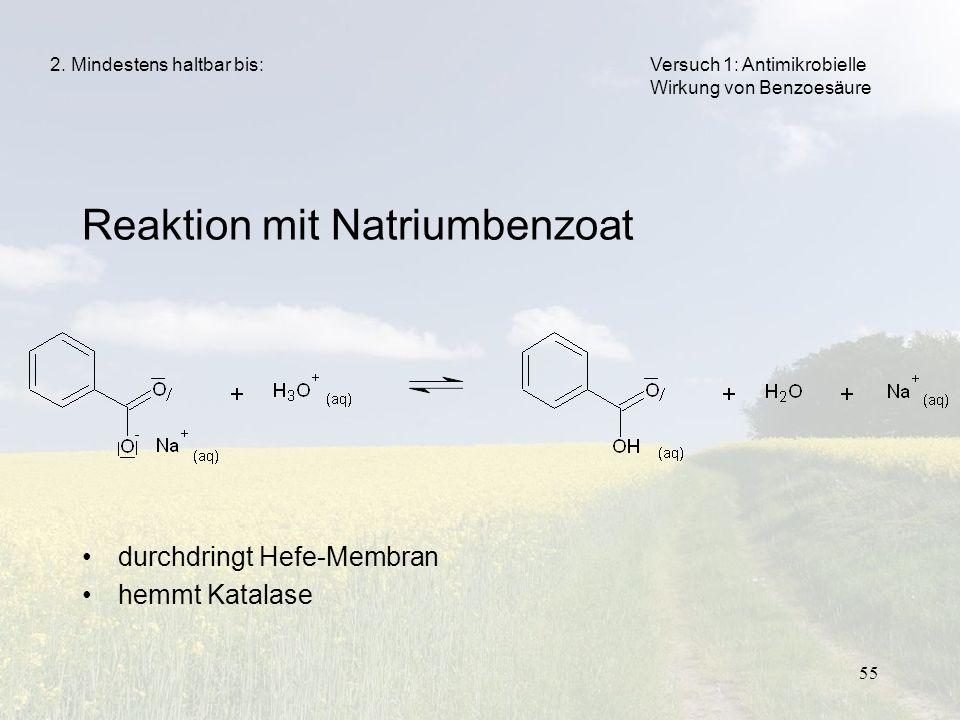 Reaktion mit Natriumbenzoat