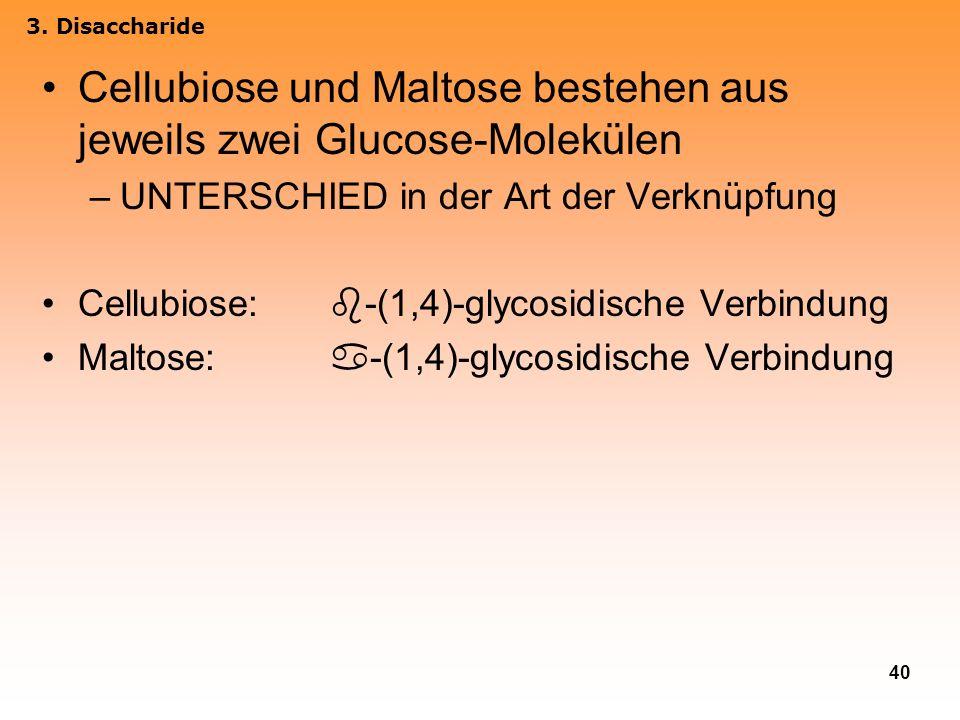 Cellubiose und Maltose bestehen aus jeweils zwei Glucose-Molekülen