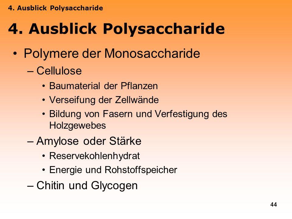 4. Ausblick Polysaccharide