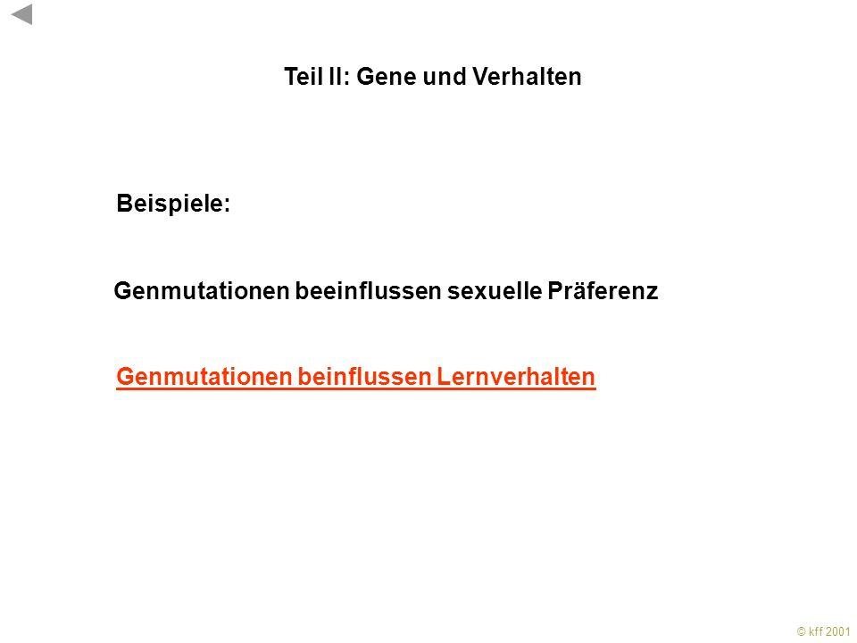 Teil II: Gene und Verhalten