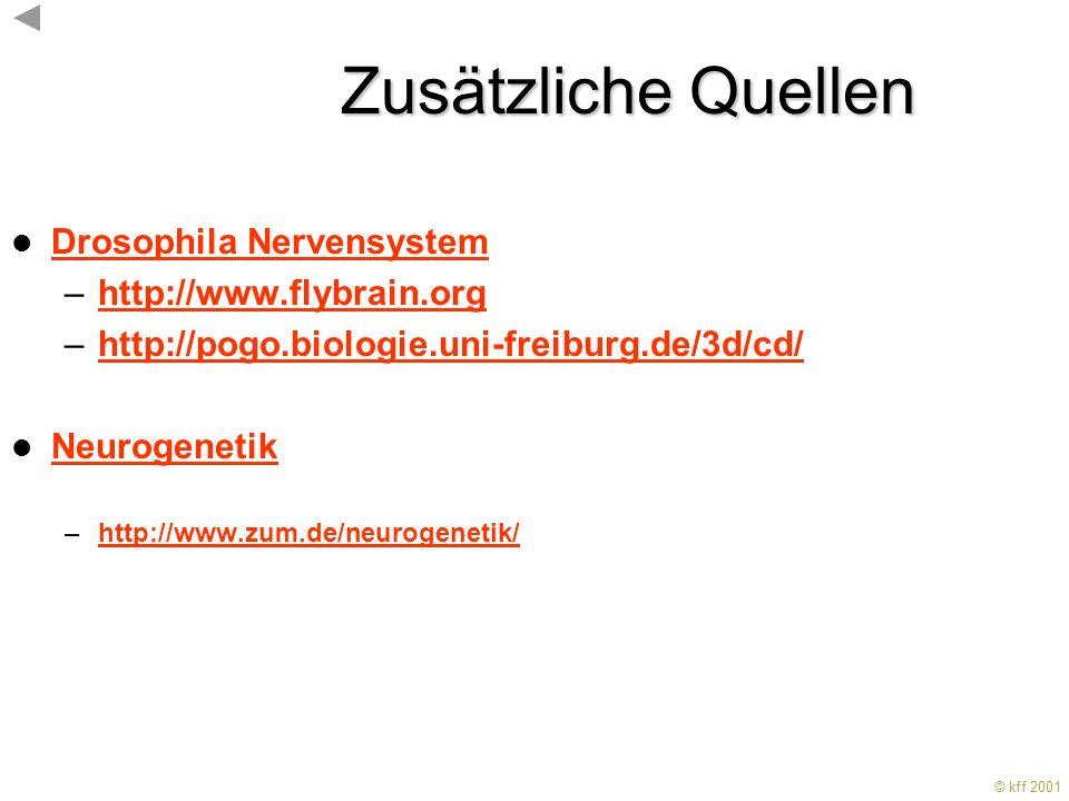 Zusätzliche Quellen Drosophila Nervensystem http://www.flybrain.org