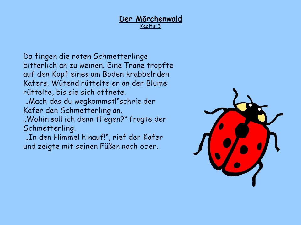 """""""Mach das du wegkommst! schrie der Käfer den Schmetterling an."""