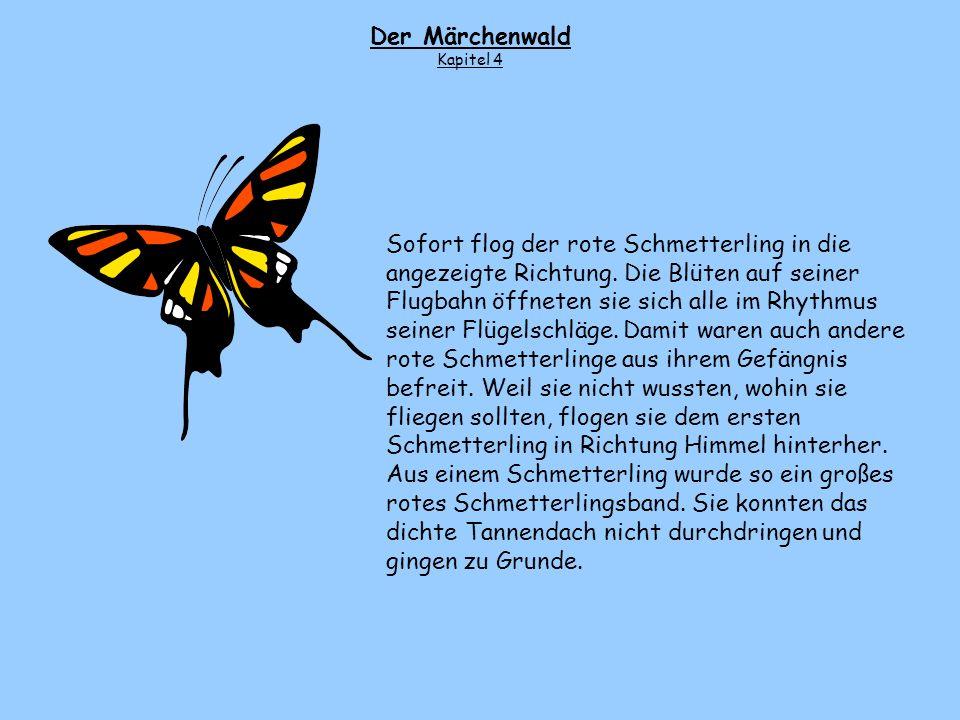 Der Märchenwald Kapitel 4.