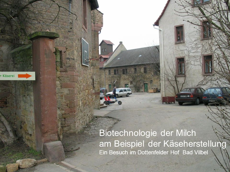Biotechnologie der Milch am Beispiel der Käseherstellung