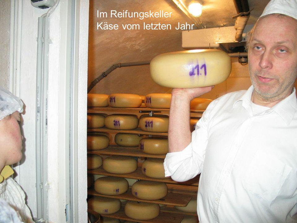 Im Reifungskeller Käse vom letzten Jahr