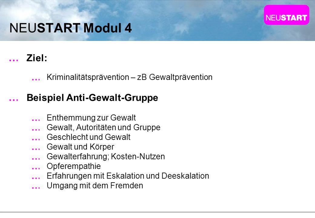 NEUSTART Modul 4 Ziel: Beispiel Anti-Gewalt-Gruppe