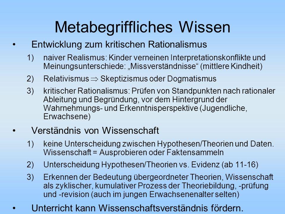 Metabegriffliches Wissen