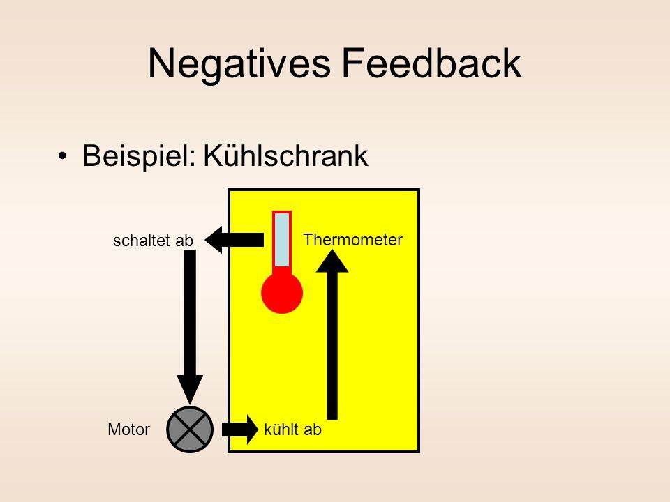 Negatives Feedback Beispiel: Kühlschrank schaltet ab Thermometer Motor