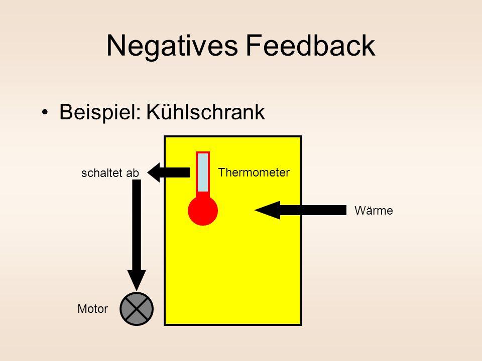 Negatives Feedback Beispiel: Kühlschrank schaltet ab Thermometer Wärme