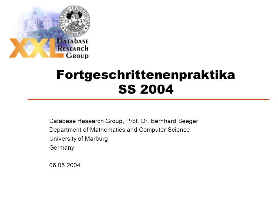Fortgeschrittenenpraktika SS 2004