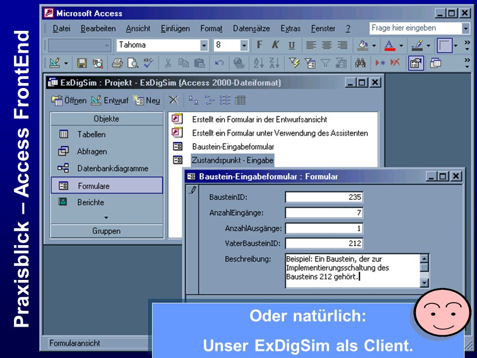 Praxisblick – Access FrontEnd Unser ExDigSim als Client.