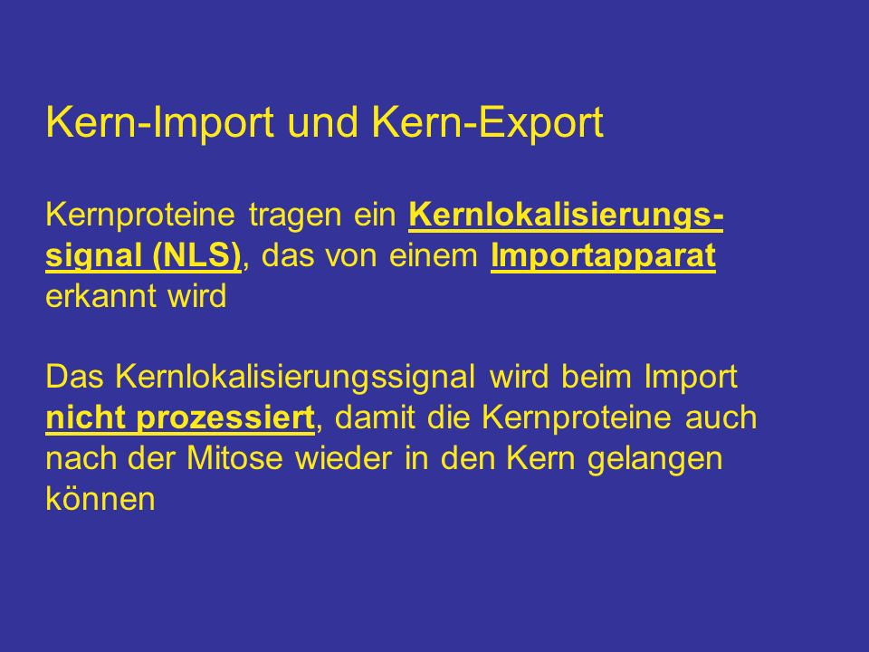 Kern-Import und Kern-Export