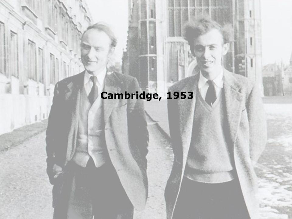 Cambridge, 1953