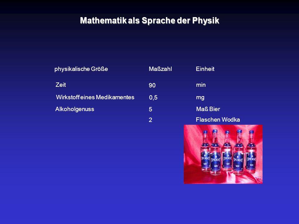 Mathematik als Sprache der Physik
