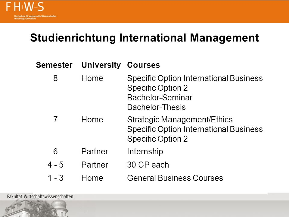 Studienrichtung International Management